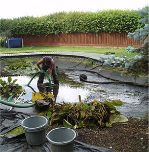 opening your pond in spring