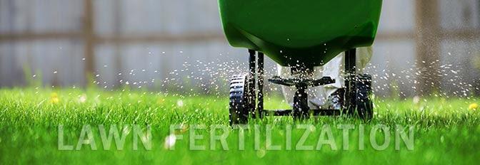 lawn-fertilization