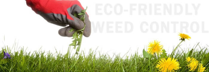 eco-friendly weed control