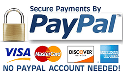 Pay online with PayPal.  No account needed.