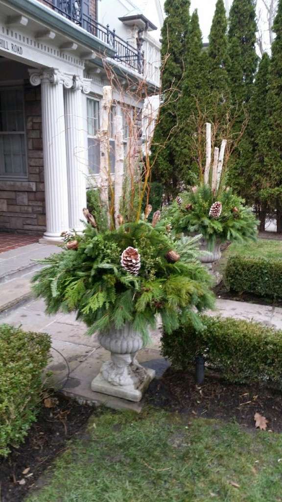 Seasonal Planters - winter