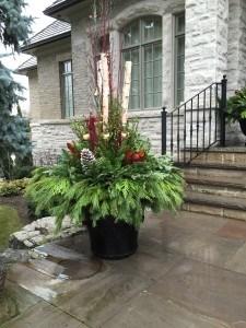 Seasonal pots and planters