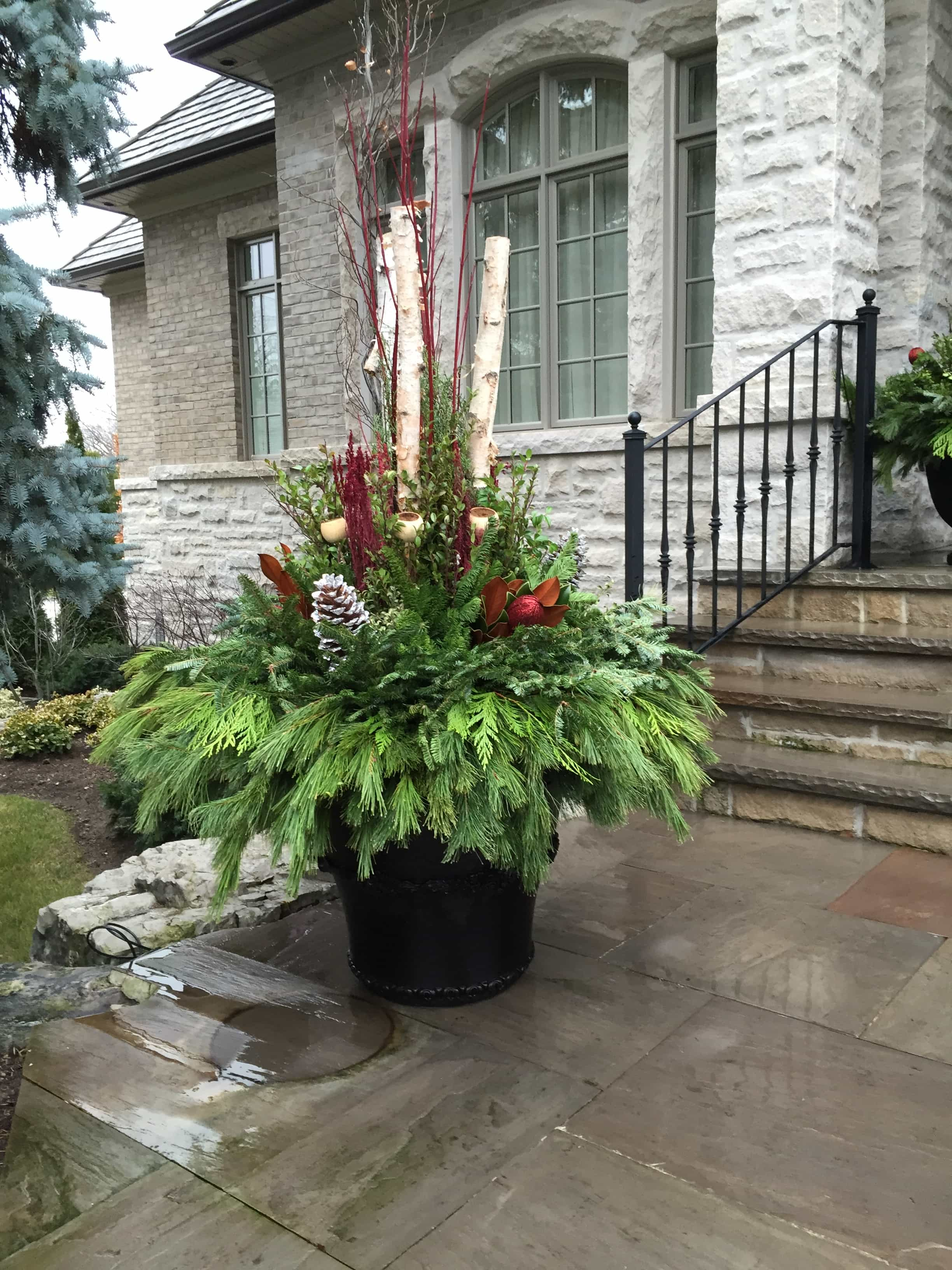 Seasonal pots and planters