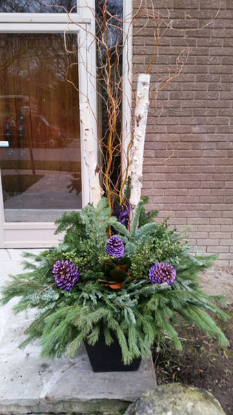 winter planter 2016