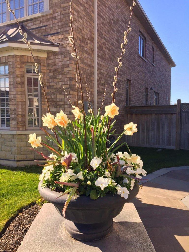 seasonal spring pots