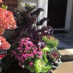 fall planters, pots and urns