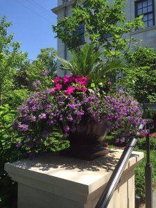 seasonal summer urn