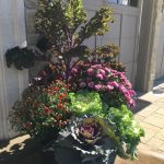 Seasonal Fall Planters