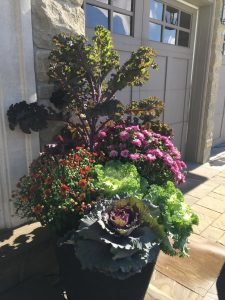 Seasonal Fall Planters