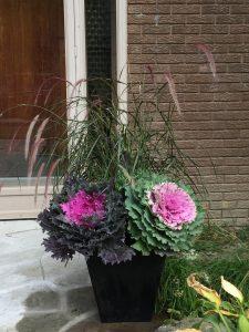 seasonal planters for fall