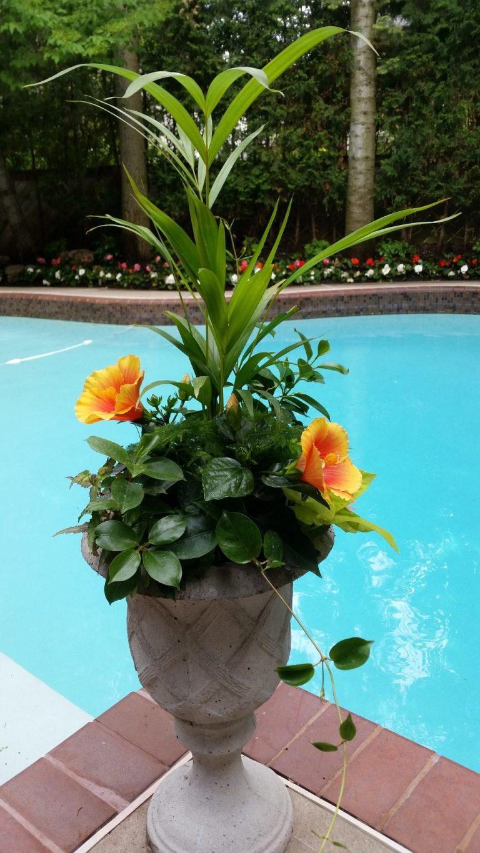seasonal planter for summer